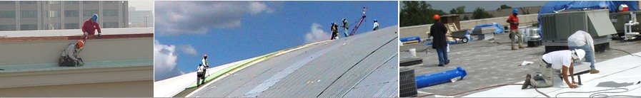 roof safety harness